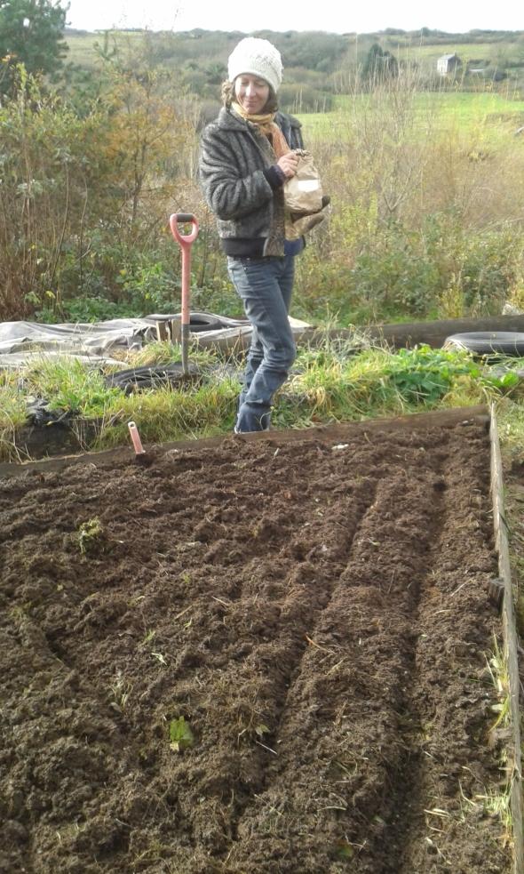 Lu planting chard.jpg